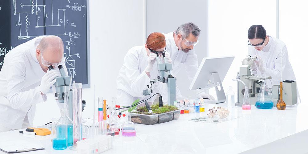 Laboratorio Seborax